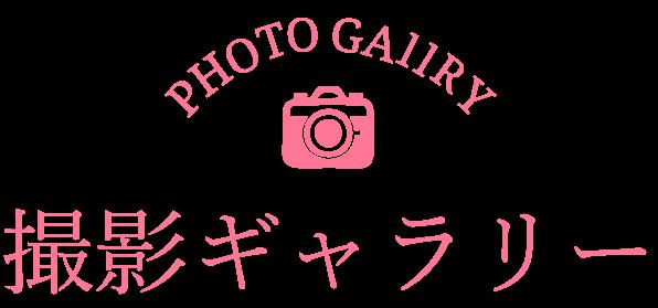 撮影ギャラリー